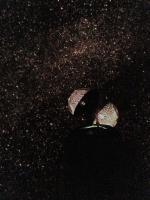 投影機と星空[1].JPG