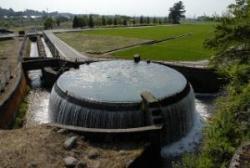 東山円筒分水