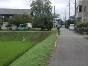 草刈り画像1.jpg