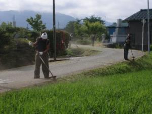 草刈り画像2.jpg
