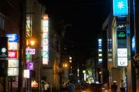 05-駅前飲食店街柿の木割り(ネオン).jpg